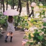 梅雨 いつからいつまで 関東 画像