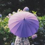雨 靴 早くa乾かす方法 画像