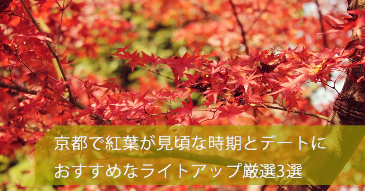 紅葉 画像 京都