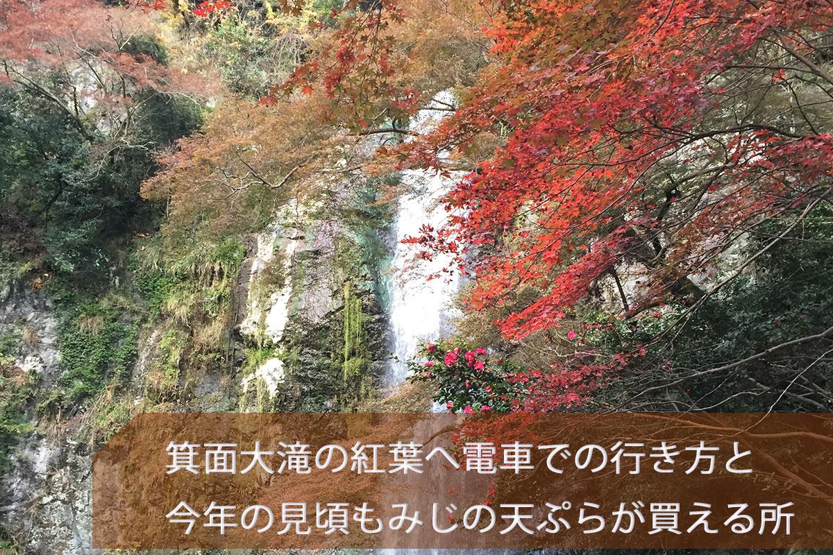 箕面大滝 紅葉 画像