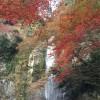 箕面大滝 画像