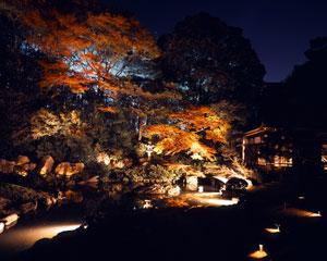青蓮院門跡 画像 紅葉