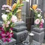 お墓参り用お花の予算相場はどのくらいでどこでいつ買うのがベスト?